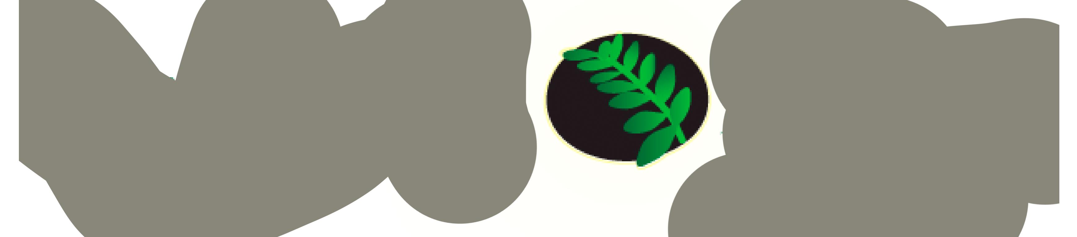 lan-light-logo
